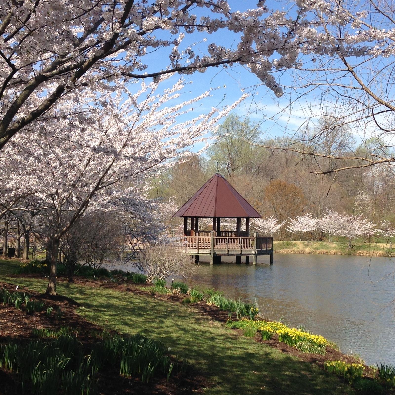 Meadowlark Botanical Gardens In Vienna Va Parent Reviews Photos Trekaroo