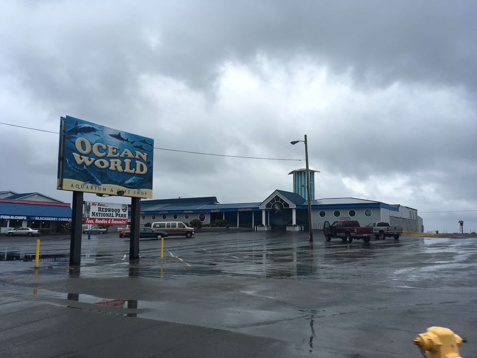 Lowest Car Insurance >> Ocean World in Crescent City, CA - Parent Reviews & Photos | Trekaroo