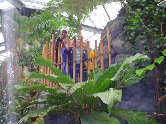 Henry Doorly Zoo Omaha Ne Kid Friendly Activity