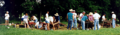 Bledsoe Fort Historical Site | travel activity for kids