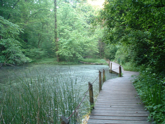 Ijams Nature Center - Knoxville, Tennessee