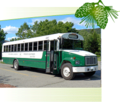 Acadia National Park Bus Tours | travel activity for kids