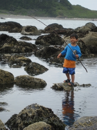 10 Tips for Exploring Tide Pools Safely With Kids_photo | kids travel, kids activities