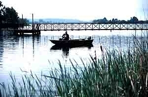 Martin Creek Lake State Park in Tatum, Texas - Kid ...