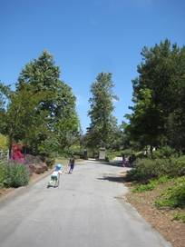 Mission Viejo California Attractions And Activities With