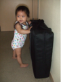 Lightweight Travel Cribs - Review of the Baby Bjorn Travel Crib Light - family travel tip