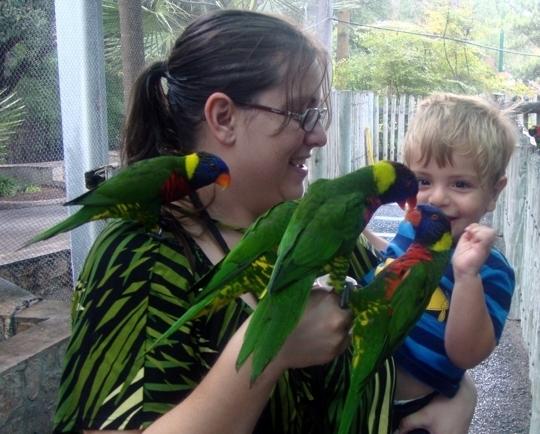 San Antonio Zoo And Aquarium San Antonio Tx Kid