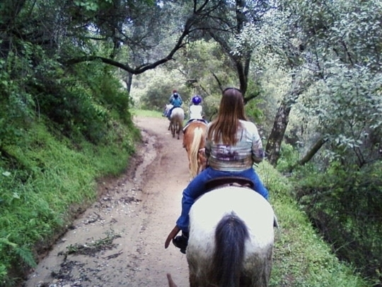 Marshall Canyon Equestrian Center La Verne Ca Kid