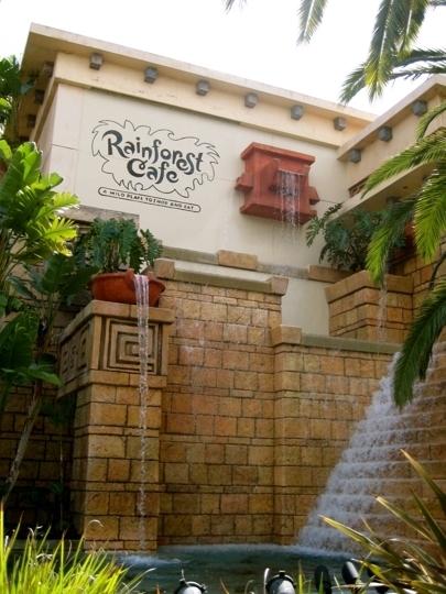 Rainforest Cafe Downtown Disney Anaheim Reviews