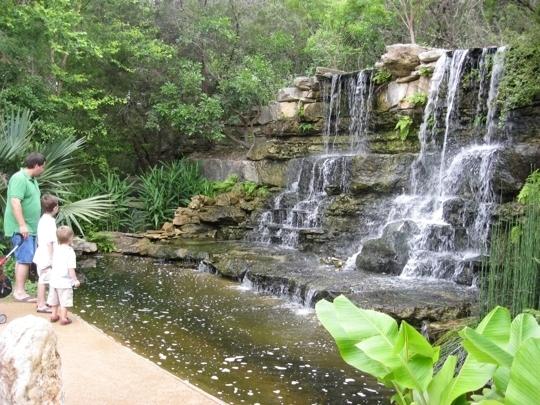 Zilker Park S Botanical Gardens Austin Tx Kid