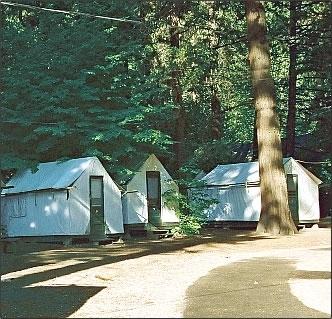 Half dome village yosemite national park ca kid for Curry village cabins yosemite