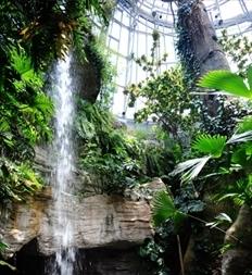 Texas Natural Science Museum Austin