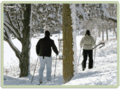 Stone Valley Recreation Area | travel activity for kids