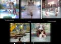 Caribbean Lancaster | travel activity for kids