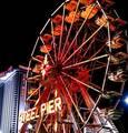 Steel Pier | travel activity for kids - 0.0 star rating